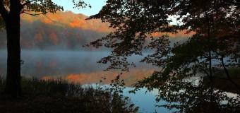 New Year, New Dawn, Begin Anew